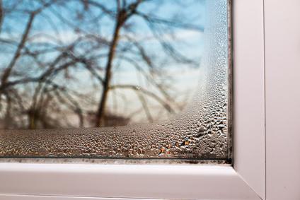 Schimmel vorbeugen und auf die Dämmung der Fassade achten